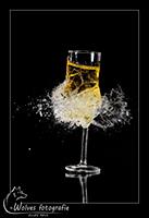 Kapot geschoten Champagneglas - high speed fotografie - Door: Ellen Reus - Wolves fotografie