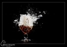 Kapot geschoten Corsendonk glas - high speed fotografie - Door: Ellen Reus - Wolves fotografie