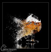 Kapot geschoten Heineken Tarwebok glas - high speed fotografie - Door: Ellen Reus - Wolves fotografie